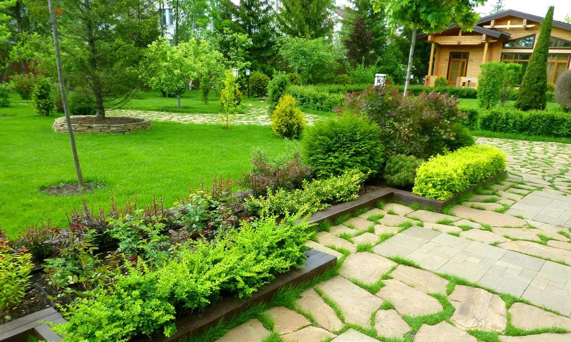 Пример озеленения участка